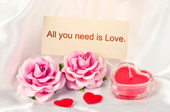 All you need is love. Royalty Free Stock Image