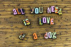 All you need is love and dog stock image