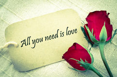 All you need is love. All you need is love handwriting on paper tag with red roses on fabric background. With a vintage style filter Stock Images