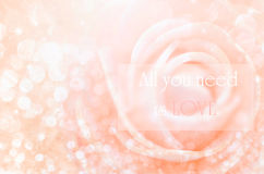 All you need is love. Love concept. All you need is love on Sweet color roses in bokeh texture soft blur for background with pastel vintage retro style Stock Photography