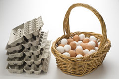 All your eggs in one basket royalty free stock photography