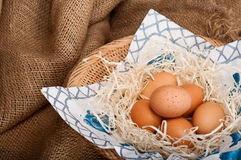 All Your Eggs in One Basket Stock Photos