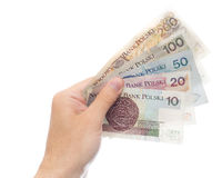 All zloty banknotes (backside version) Royalty Free Stock Image