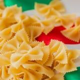 alla茄子背景烹调新鲜的意大利norma荷兰芹意大利面食意粉蕃茄传统白色 特写镜头顶面正面图 在意大利旗子的颜色背景的干通心面 免版税库存图片