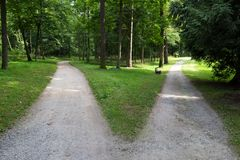 Alla forcella: due strade nella foresta immagine stock