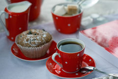 Alla frukosterar Royaltyfri Foto