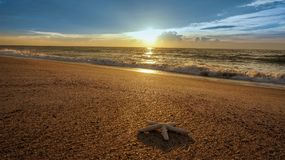 Alla mig själv under soluppgång Royaltyfria Foton