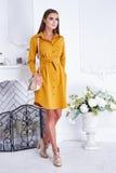 Alla moda alla moda del bello della donna catalogo sexy dell'abbigliamento Fotografia Stock