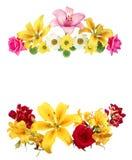 alla några objekt för den blom- illustrationen för sammansättningselement individuella skalar formattexturer till vektorn blommor Arkivbilder