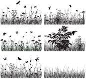 alla några växter för objekt för samlingselementillustrationen individuella skalar formattexturer till vektorn Arkivfoton