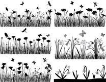 alla några växter för objekt för samlingselementillustrationen individuella skalar formattexturer till vektorn Royaltyfri Bild