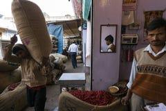 alla 10 1986 2007 2011, som det bahadelhi huset mig invigde indier vetet nytt november för lotusblommamodern folk, tjänar som sub Arkivbild