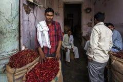 alla 10 1986 2007 2011, som det bahadelhi huset mig invigde indier vetet nytt november för lotusblommamodern folk, tjänar som sub Arkivfoto