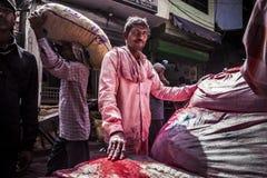 alla 10 1986 2007 2011, som det bahadelhi huset mig invigde indier vetet nytt november för lotusblommamodern folk, tjänar som sub Royaltyfri Bild
