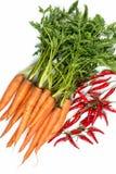 alla sortgrönsaker Arkivbilder