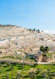 alla välva sig sikt för tempel för ryss för del för centrala för cloisterrammontering olivgrön för nationer ortodox Arkivbilder