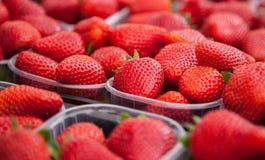 alla vita mogna jordgubbar för bakgrundsfine Arkivfoto