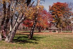 Allaire Park in Howell New Jersey if the fall stock photos