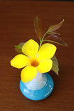 Allamanda in blue vase Royalty Free Stock Images