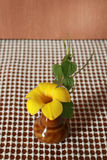 Allamanda cathartica in the small vase. The allamanda cathartica is in the small vase to decorate the dinner table Royalty Free Stock Photography