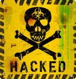Allarme del virus informatico Fotografia Stock