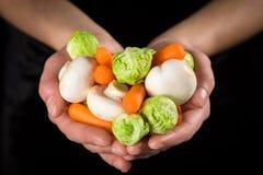Alldeles av grönsaker i kvinnahänder arkivbilder