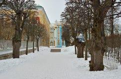 Allée d'hiver et palais de Catherine à Pushkin Photo stock