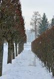 Allée d'hiver et palais de Catherine à Pushkin Photographie stock