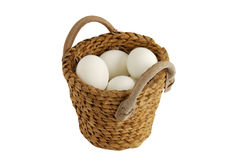 Alle Eier im gleichen Korb Stockbilder