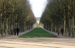 Alle en Fontainebleau imagen de archivo libre de regalías