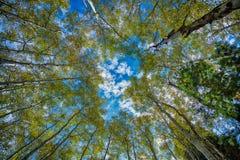 Alle nuvole HDR Fotografie Stock Libere da Diritti