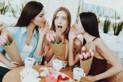 Alle Vrouwen die Coffe in 8 drinken Maart De vrouwen met Koffie vieren 8 Maart Mooi Gezicht in Gelukkige Dag 8 Maart Familie met  royalty-vrije stock foto