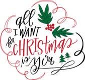 Alle wil ik voor Kerstmis ben u Royalty-vrije Stock Fotografie