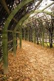 Allee in einem Garten im Herbst. Lizenzfreie Stockfotografie