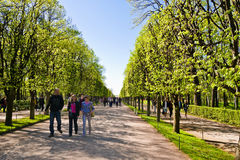 Allee in Peterhof, St Petersburg, Russland Stockbild