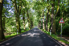 Allee Royalty Free Stock Images