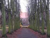 Allee von den alten Bäumen, die zu die Kirche führen Stockfotografie