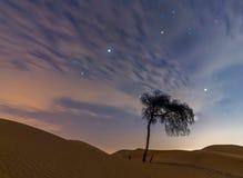 Alleen in de droge Arabische woestijn Stock Foto