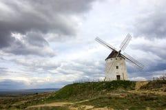 Alleen in de wind Royalty-vrije Stock Foto
