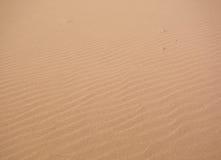 Alleen in de woestijn Stock Fotografie