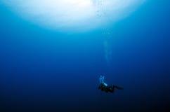 Alleen duiker in het blauw royalty-vrije stock afbeeldingen