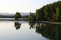 Alleen in het meer Stock Foto