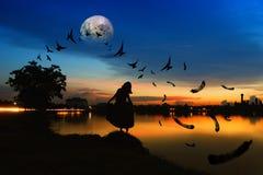 Alleen met de zonsondergang Stock Afbeeldingen