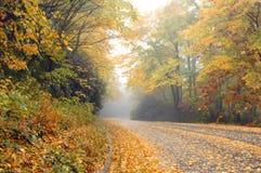 Alleen op het Blauwe Brede rijweg met mooi aangelegd landschap van de Rand Royalty-vrije Stock Foto's