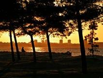 Alleen op het strand Stock Foto's