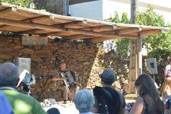 Alleen van Harmonika bij de Partij van de Doedelzak in Quinta De Cancelada royalty-vrije stock foto's