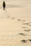 Alleen in Woestijn Royalty-vrije Stock Fotografie