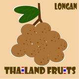 Allegagione: Longan dalla Tailandia Fotografia Stock Libera da Diritti