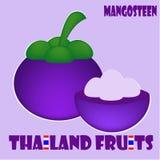 Allegagione: Mangostano dalla Tailandia Immagine Stock Libera da Diritti