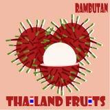 Allegagione: Rambutan dalla Tailandia Immagini Stock Libere da Diritti